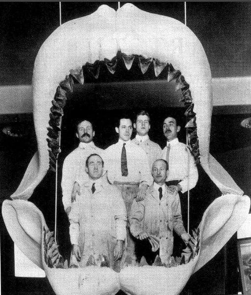 Фото челюстей мегалодона с людьми внутри