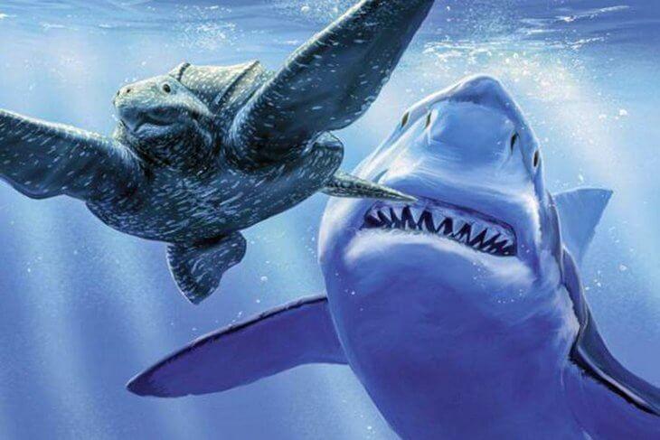 морские черепахи и мегалодон