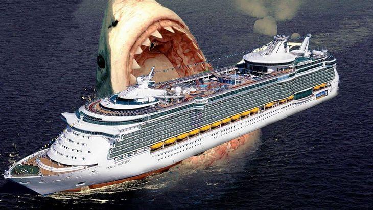 акула мегалодон фото настоящие как выглядит